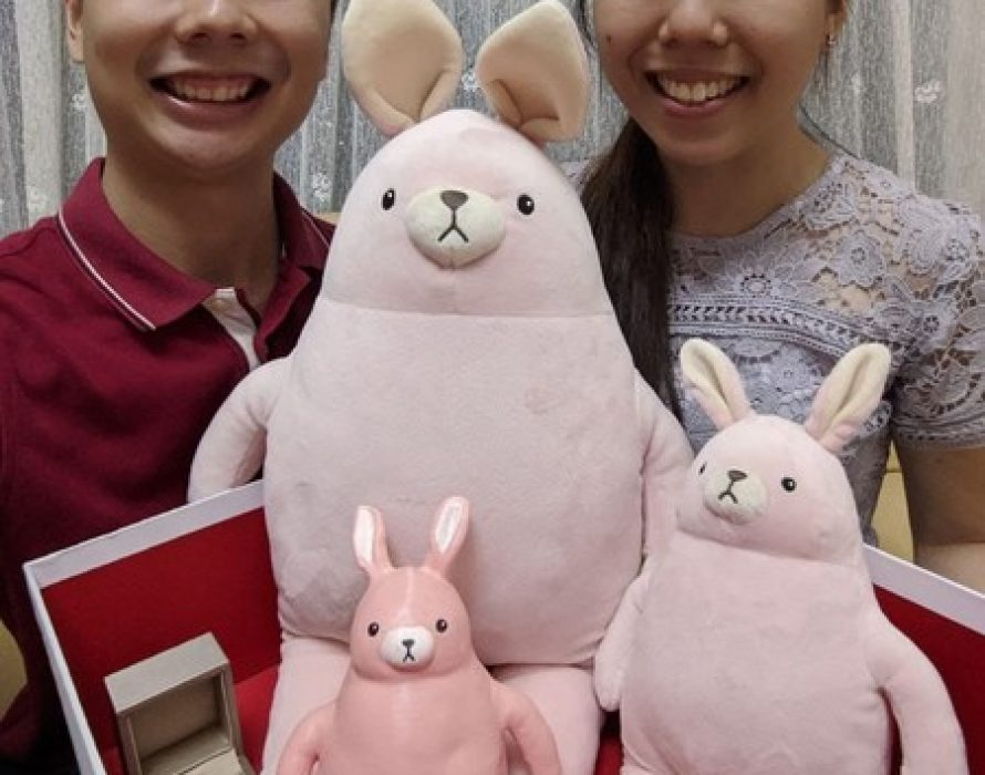 MINISO Creates Limited Release Plush Toy for Surprise Marriage Proposal