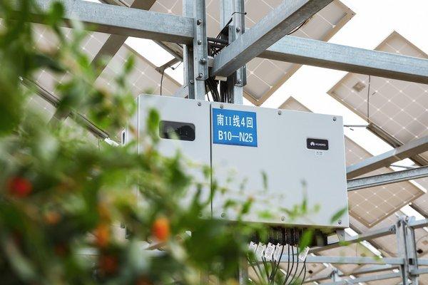 Smart PV Breathing Life into a Desert Landscape
