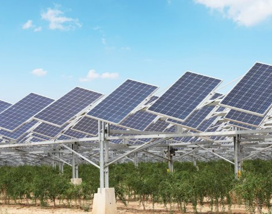 Smart PV: Breathing Life into a Desert Landscape