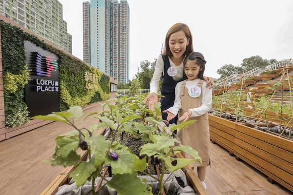 Lok Fu Place has become the only shopping centre in Kowloon with an outdoor urban farm, which is filled with various species of organic herbs, vegetables and fruits.