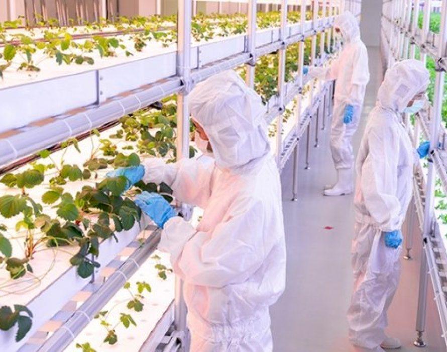 Thailand's Eastern Economic Corridor to Become Post-COVID Global Food Innovation Hub
