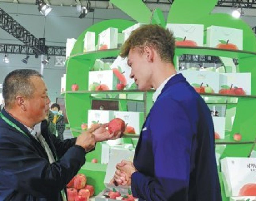 Yantai's apples at the core of rural development