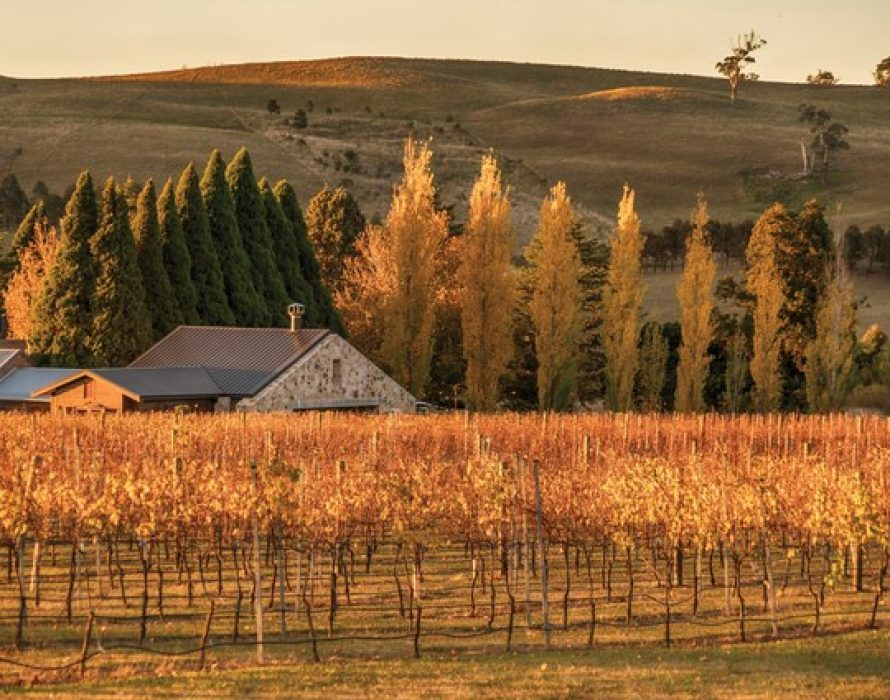 Destination New South Wales – Aussie Wine Weekend: Explore the Southern Highlands' Food & Wine Trail