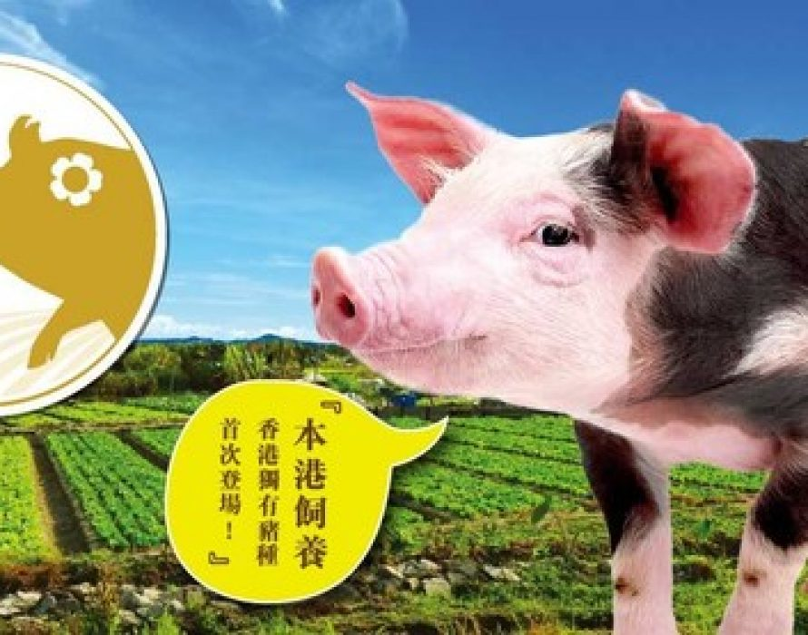 Hong Kong Heritage Pork Consolidates Local Supply Chain and Provides Fresh Pork to the Hong Kong Market