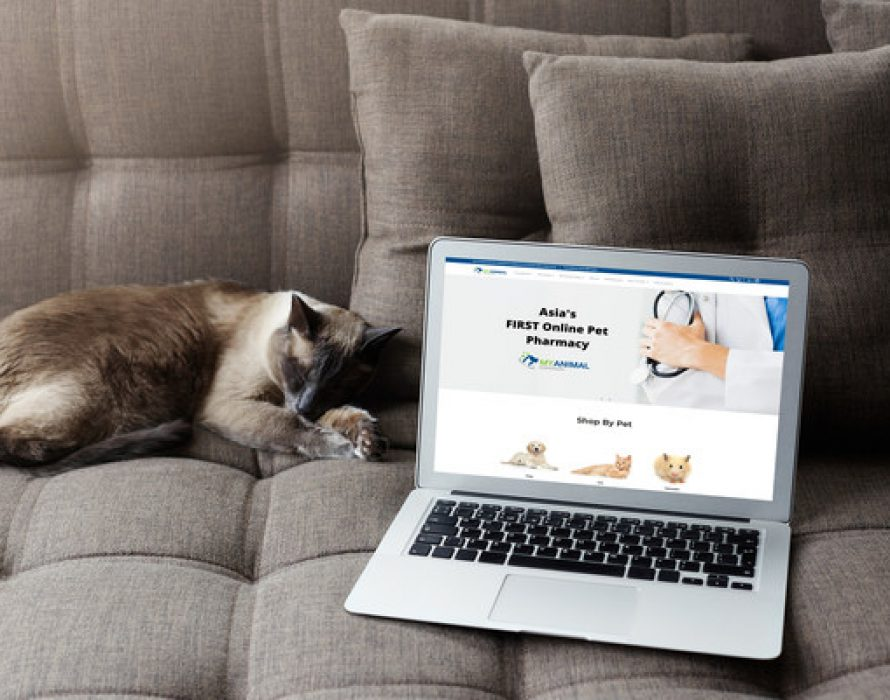 Asia's First Online Pet Pharmacy Goes Live – Female Tech Founders Launch My Animal Dispensary