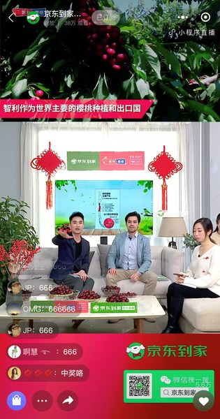 Nicolás Silva, the Business Development Manager at the Trade Commission of Chile in Shanghai, attended JDDJ's Chilean cherry livestreaming e-commerce event