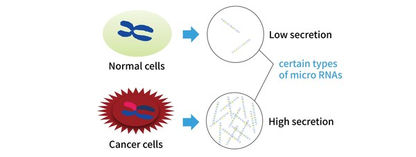 Detecting microRNAs that are increasingly secreted in cancer cells to determine whether cancer is present