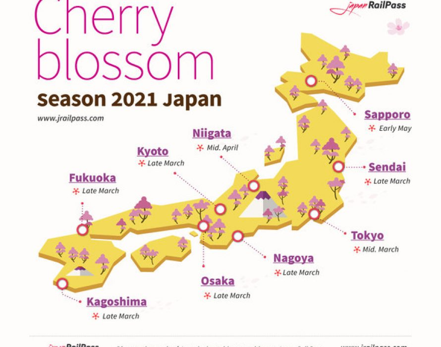 Experience Japan's 2021 Cherry Blossom from home
