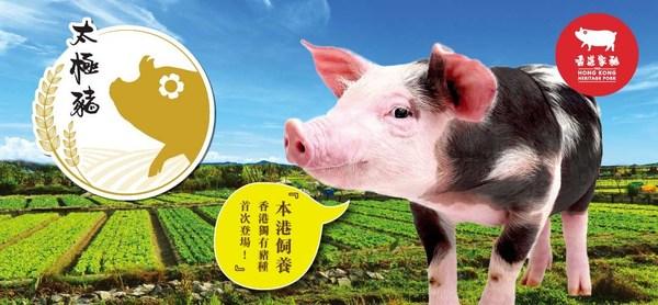 Hong Kong Heritage Pork
