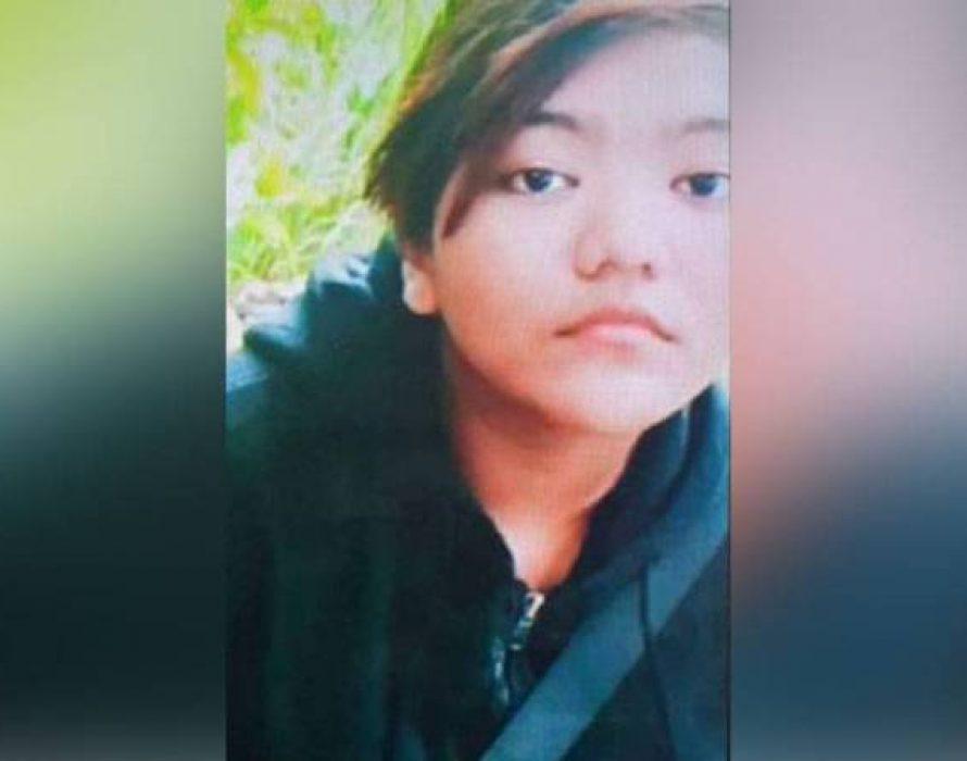 Police seek public help in tracking down missing Ipoh girl
