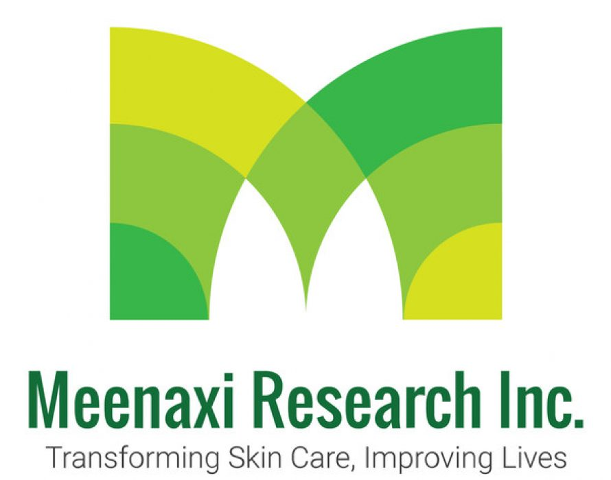 The remarkable rise of Meenaxi Research Inc.