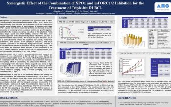 Antengene Presented Preclinical Data Demonstrating Potent Synergistic Effect of the Combination of ATG-010 (Selinexor) and ATG-008 (Onatasertib) for the Treatment of Triple-Hit DLBCL