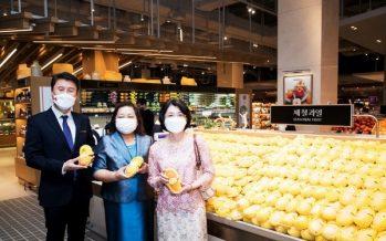"Thai Rainbow Mango ""Mahachanok"" enters Korea after 9 years of endeavor"