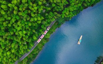 Tourism Industry Innovation: Liyang Tea Festival Sets Benchmark for the Integration of Experiential Tourism Plus Sustainable Economy