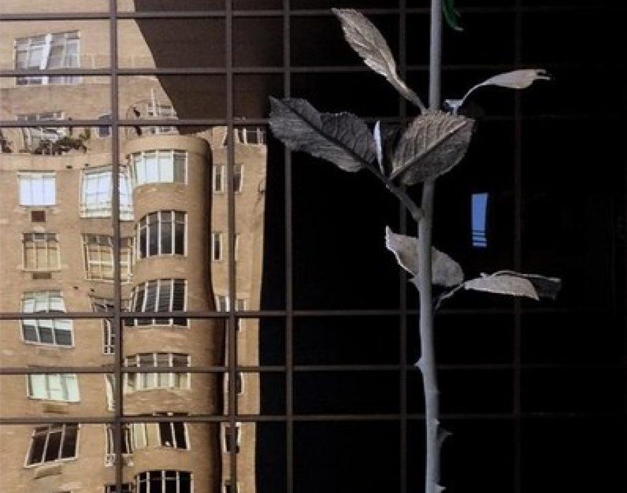K11 MUSEA Debuts First Ever Instagrammable Art Karnival