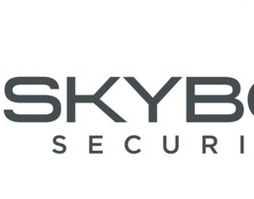 Skybox Security Wins Best Vulnerability Management Solution
