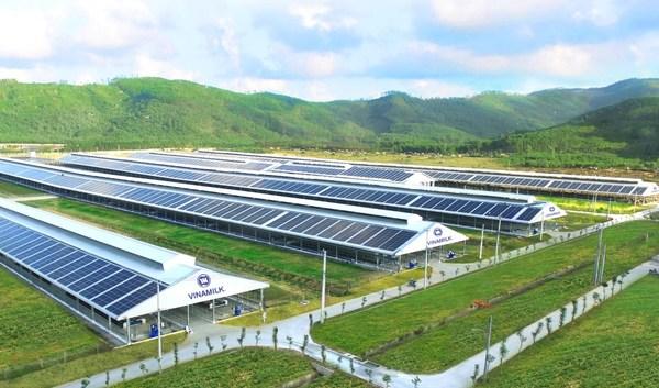 Solar power will be deployed on Vinamilk eco-friendly farming system