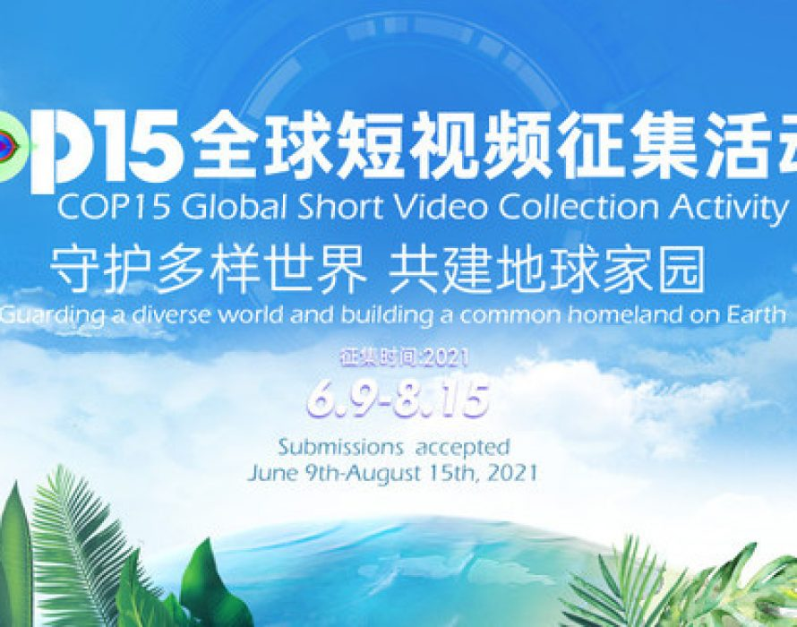 Global Short Video Collection Activity Launched to Capture Beauty of Biodiversity