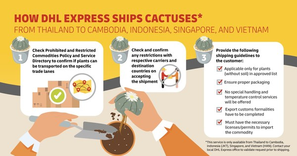 DHL Express' clear processes and guidelines to ship cactuses