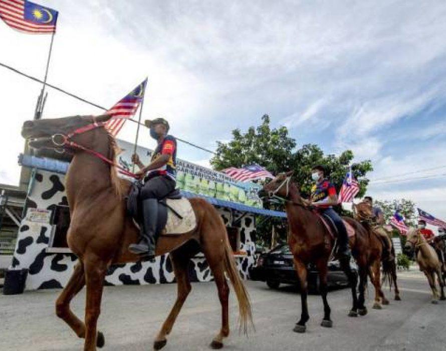 Kuda Merdeka helps boost National Day mood