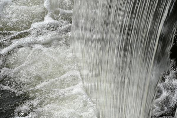 Frost & Sullivan - Water & Wastewater