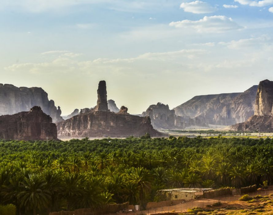 AlUla's Ambitious Nature and Wildlife Strategy Recognised at Global Level with IUCN Agreement