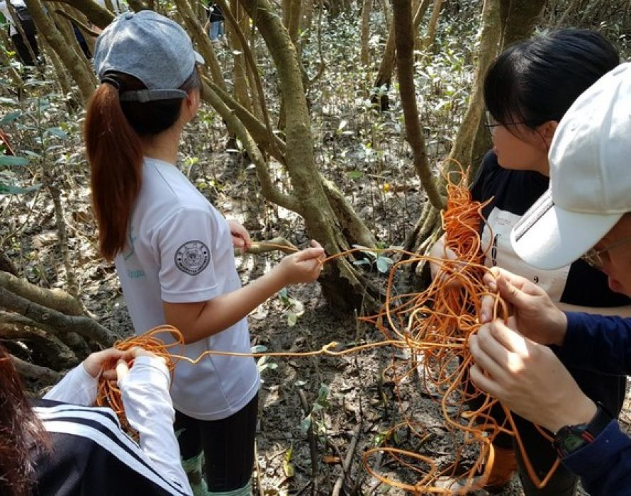 """China Oceanic Development Foundation: Malaysian College Students Explore the """"Lifeline"""" of Coastal Development in a Summer Camp in China"""