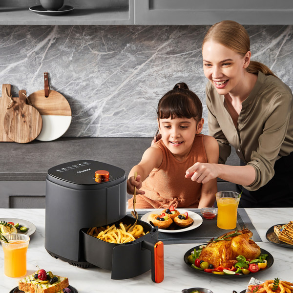 A new experience with Gaabor's fume-free air fryer