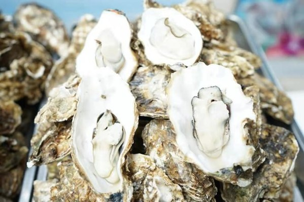 Rushan Oyster