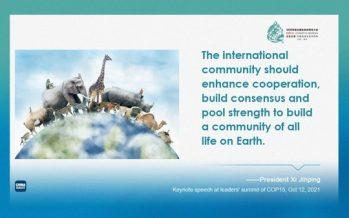 Xi: China to commit 1.5b yuan to biodiversity